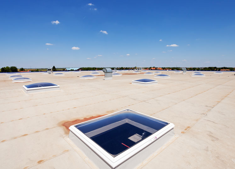 SKYLIGHTS & FALL PROTECTION
